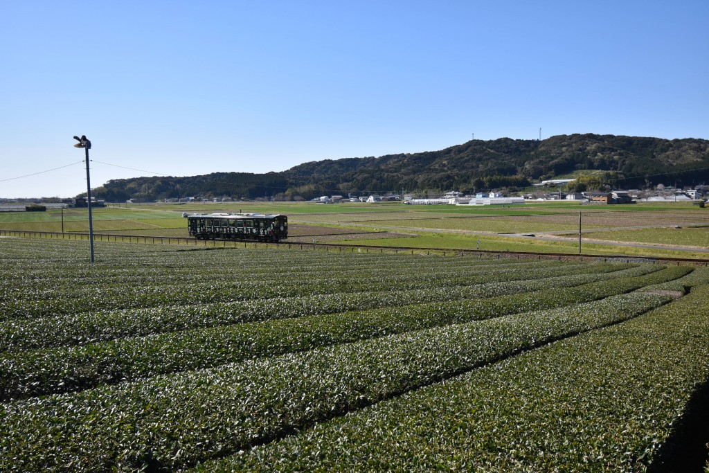 2021.03.23山田地区2