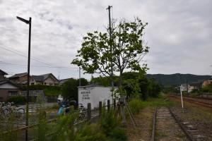 2021.05.25知波田駅2