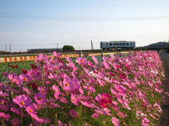 toko-syuntomama04-thumb-570xauto-2076.jpg