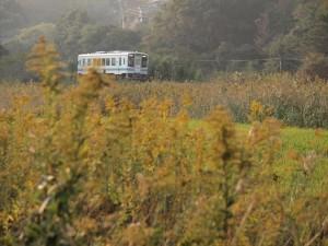 toko-tetsubunhokyu29-thumb-570xauto-2137.jpg