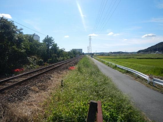 toko-walkingbucho05-thumb-570xauto-2070.jpg