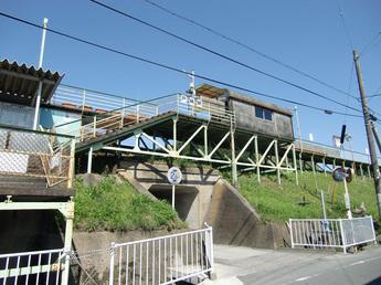 towata01