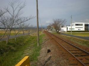 walkingbucho01-thumb-570xauto-1344.jpg